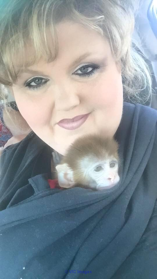 Amazing baby monkey available for adoption  Calgary, Alberta, Canada Classifieds