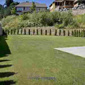 Excellent Commercial Landscape Maintenance Services  Calgary, Alberta, Canada Classifieds