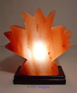 Buy Himalayan Salt Lamp – Mini Maple Leaf Shape Calgary, Alberta, Canada Annonces Classées