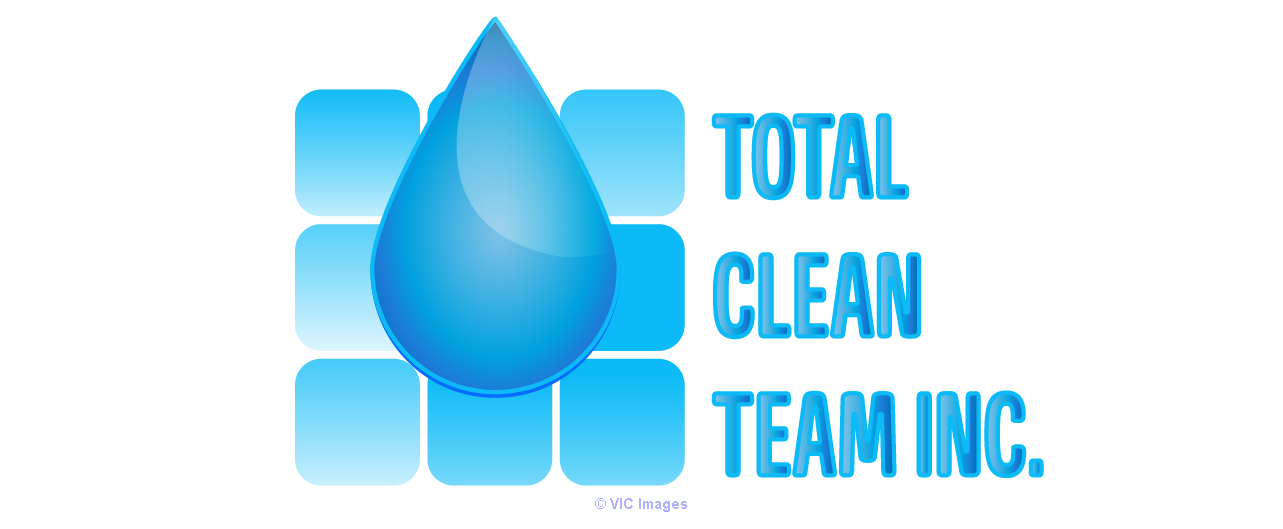 Total Clean Team Inc - Roof Cleaning Products calgary