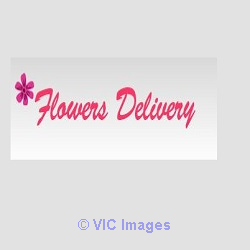 Same Day Flower Delivery Toronto calgary