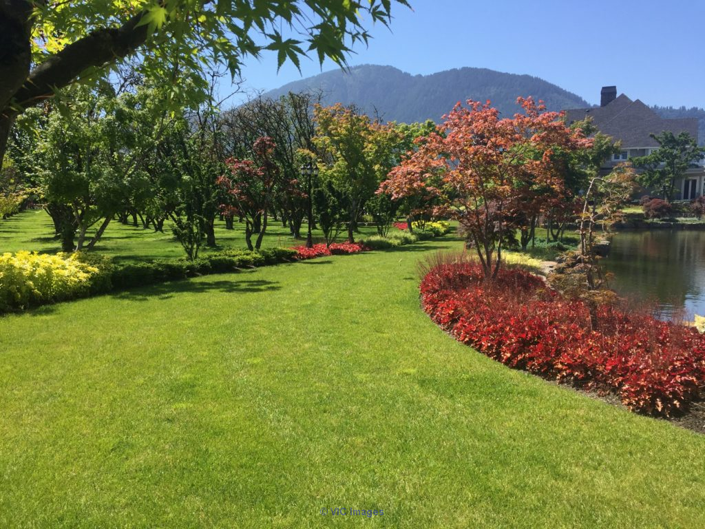 Chilliwack Lawn Mowing - Transformations Landscaping calgary