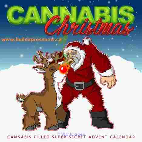 Cannabis Christmas Advent Calendar - BudExpressNOW.ca calgary
