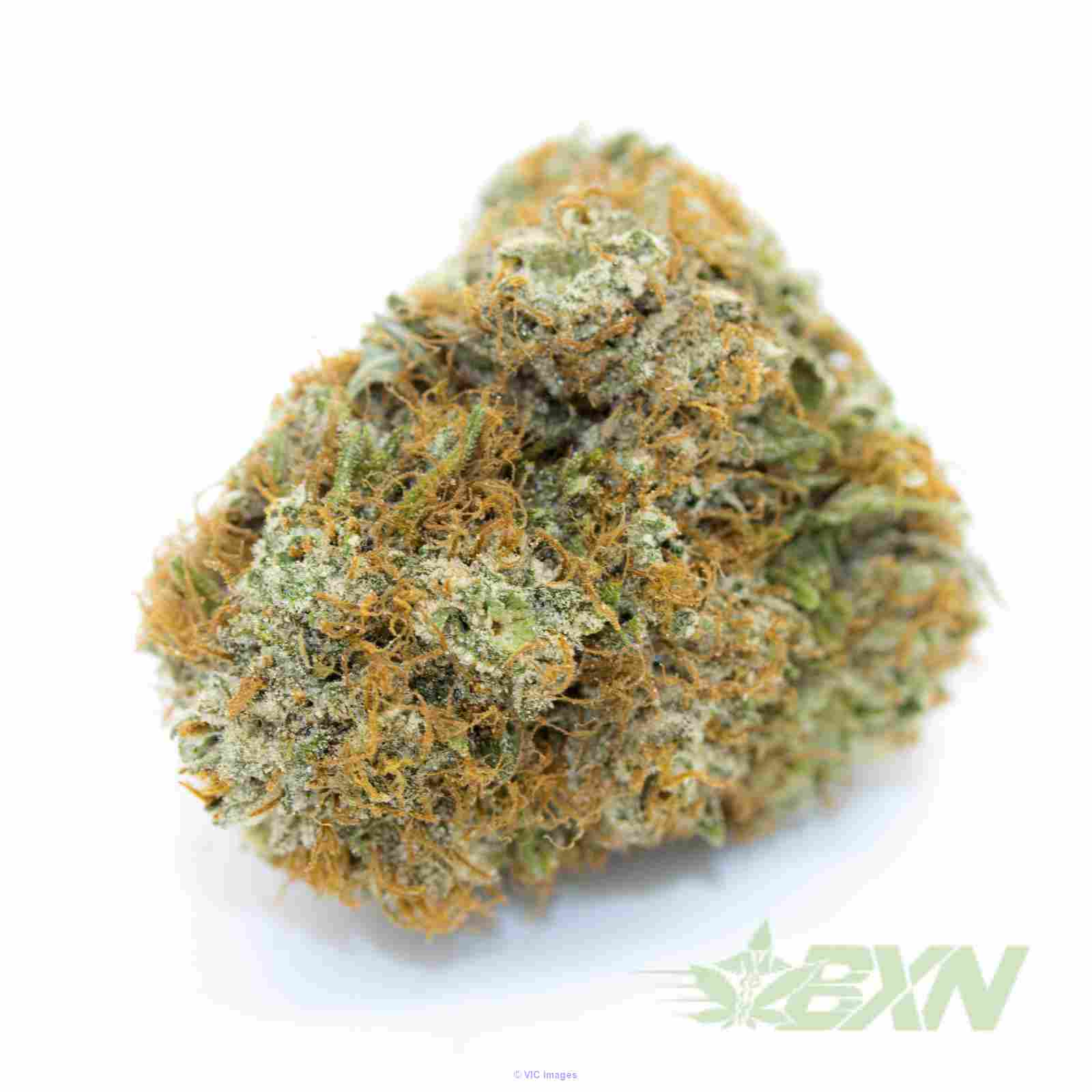 OG Kush – ON SALE ($119/Oz), SPECIAL PRICE, Calgary, Alberta, Canada Annonces Classées