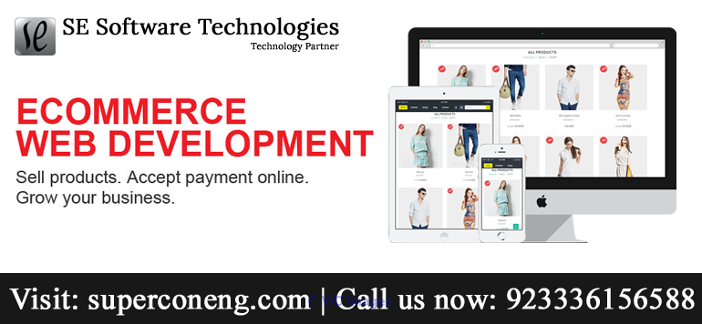 Hire Ecommerce Professionals for Ecommerce website   calgary