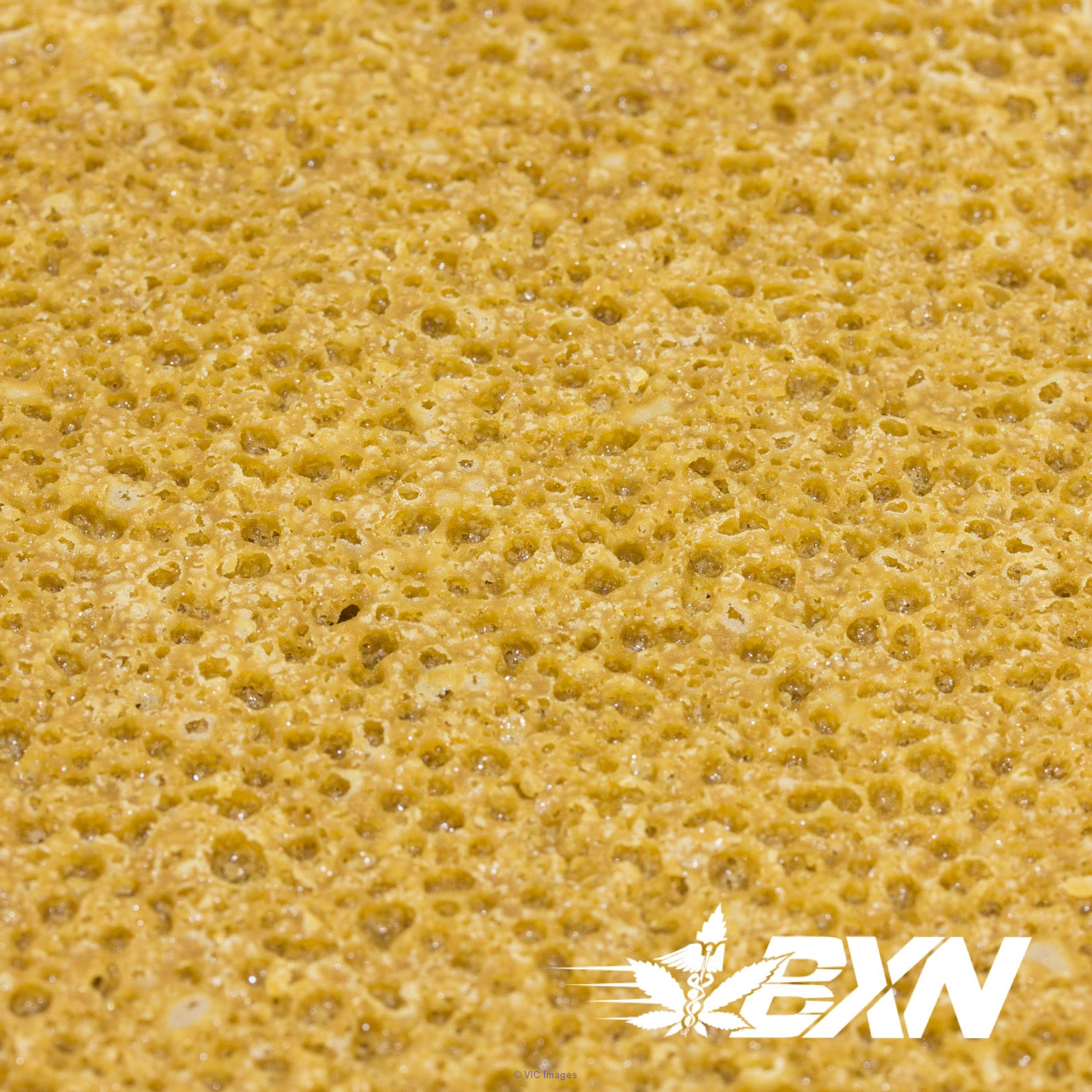 BUDDER – Pineapple Express (1 GRAM) – Quantum Extracts calgary
