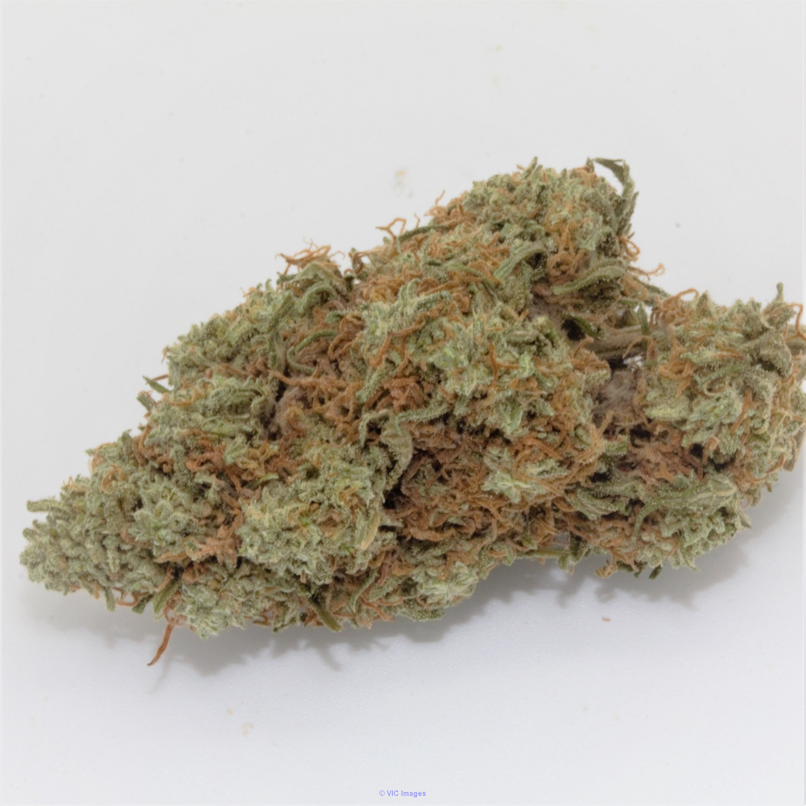 Chemdawg – ON SALE ($125 / OZ) Calgary, Alberta, Canada Annonces Classées
