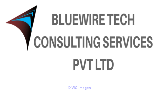 Bluewire Tech Human Resource service calgary