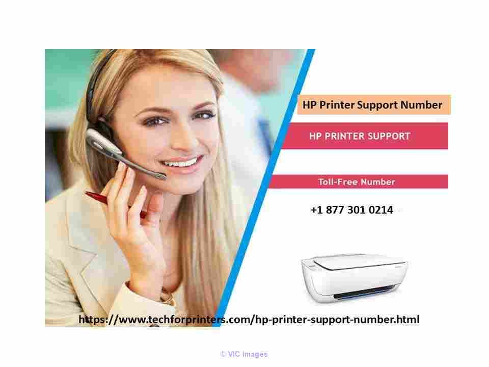 Online HP Printer Support Number  calgary