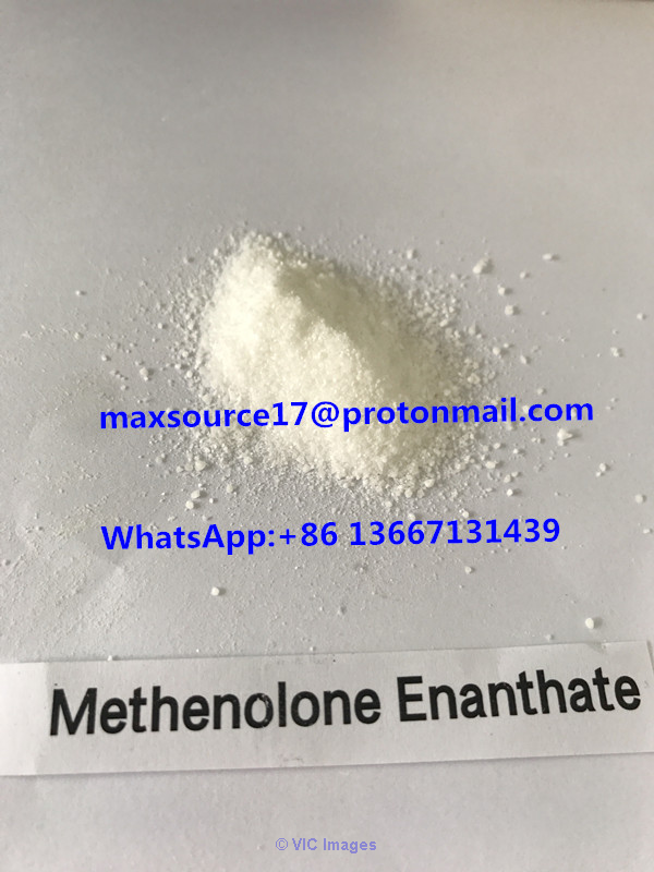 High quality Methenolone powder for sale from Maxsource Chem calgary