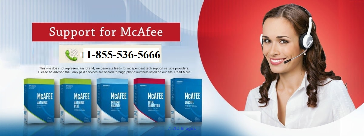 McAfee Antivirus Technical Support Number 18555365666 Calgary, Alberta, Canada Classifieds