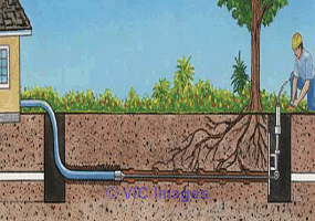 Why Hire a Professional for Expert Water Line Repair? Calgary, Alberta, Canada Annonces Classées