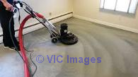 Carpet Cleaning Services in Edmonton Calgary, Alberta, Canada Classifieds