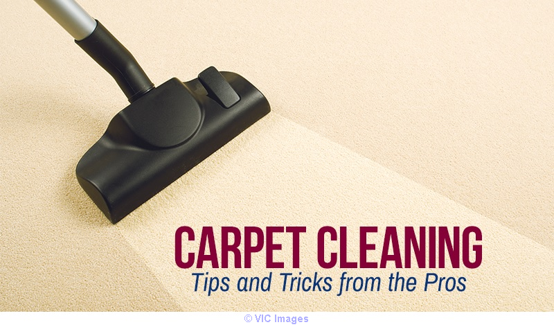 Carpet Cleaning | Carpet Cleaning Services in Montreal Calgary, Alberta, Canada Classifieds